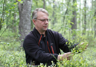 Petri Lehtiniemi, the owner of a Posio-based berry processing company, shows how the cold weather has affected the flowering of blueberries.