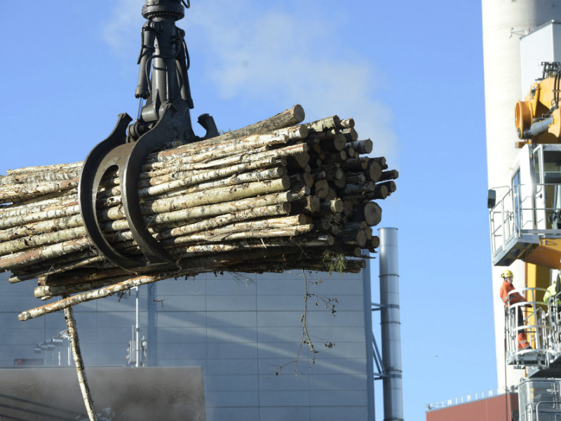 Birch logs were being loaded at the pulp mill of UPM in Kuusankoski on 28 October, 2015. UPM says all of the employees of its pulp and paper mills in Finland have been entitled to performance-based incentives for ten years.