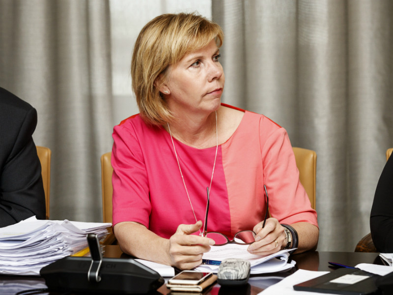 Anna-Maja Henriksson, the chairperson of the Swedish People's Party, has urged all stakeholders for calm amid continuing uncertainty over the timetable of the social, health care and regional government reform.