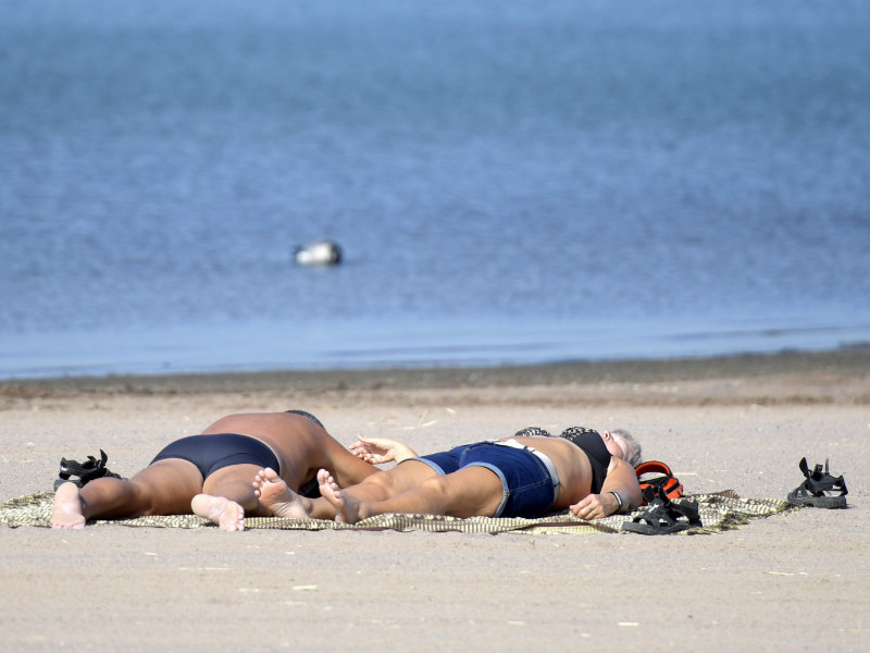 Sunbathers in Hietaniemi, Helsinki, on 24 August 2018. The month's mean temperature was 1–3 degrees higher than usual, according to the Finnish Meteorological Institute. (Credit: Vesa Moilanen – Lehtikuva)