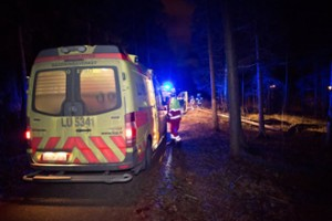 Two ambulances were dispatched to treat two people injured by a falling tree in Espoo.