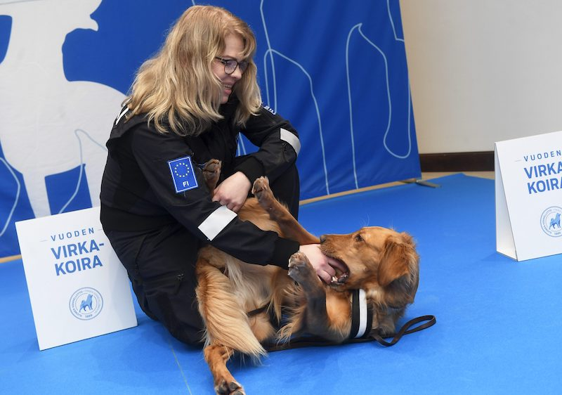 Customs Dog of the Year Aino with their handler at the awards ceremony.