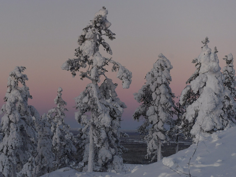 Mercury plunges to -41°C, a new low for this winter, in Utsjoki, Finnish Lapland
