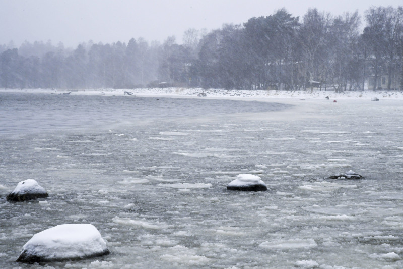 An icy layer covers the sea in Lauttasaari